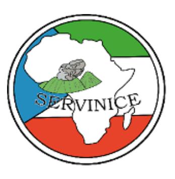 Servinice.com